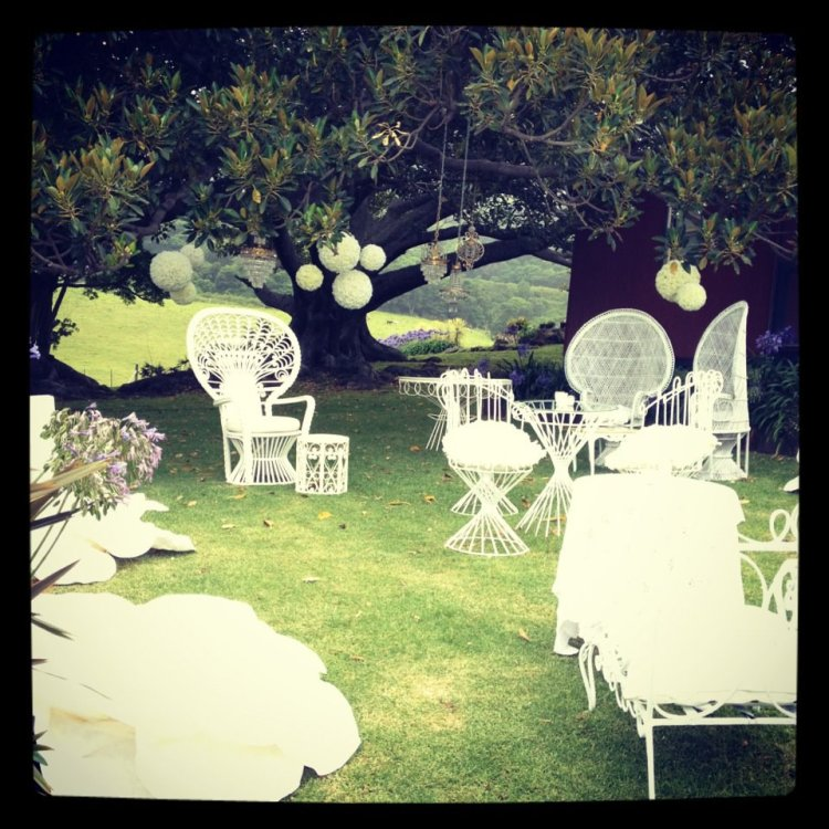 white wedding peacock chairs