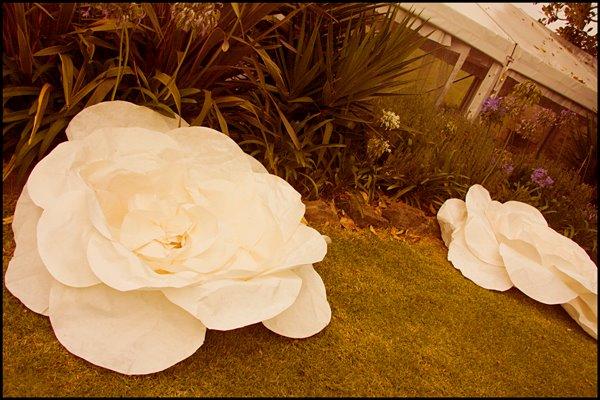 giant white paper flower