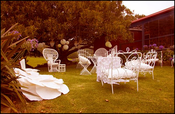 white wedding furniture peacock chairs