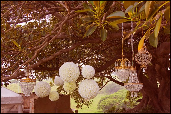 hanging decorations chandeliers  rose balls crystal