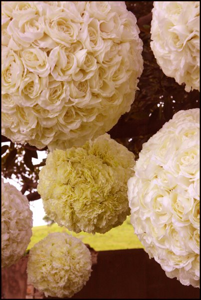 wedding decorations kiama roseballs
