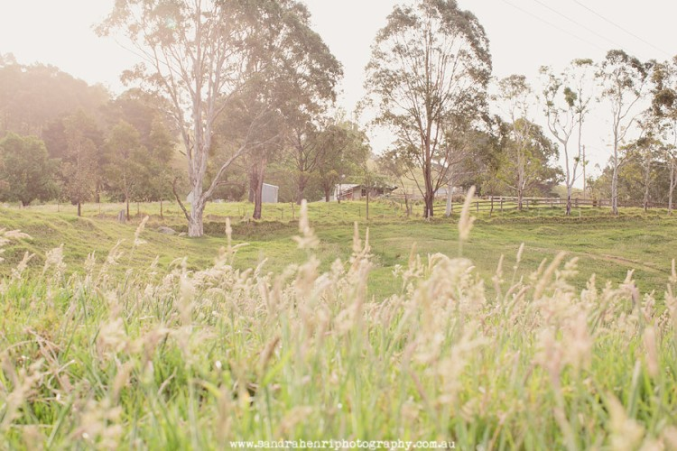 KangarooValleyWedding