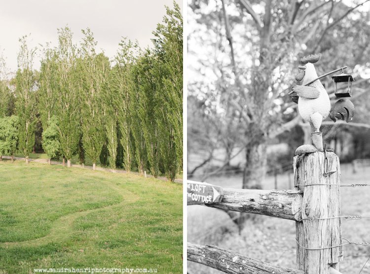 KangarooValleyWedding8